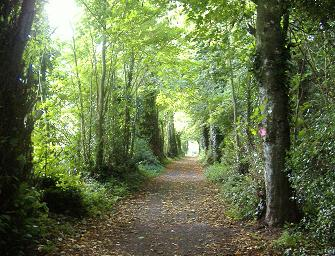 Cahir park walks